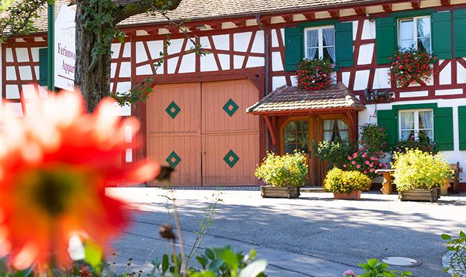 Fachwerkhaus mit Blumen im Sommer