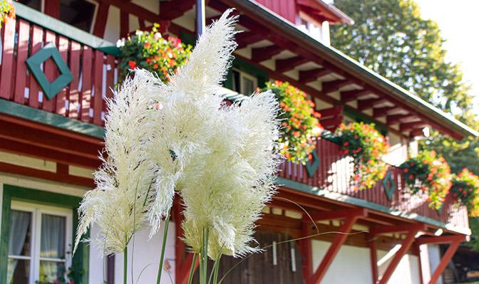 Blumenwedel vor Balkon